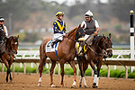 JULY 24, 2021: United and Flavien Prat at the Eddie Read Stakes at the Del Mar Fairgrounds in Del Mar, California on July 24, 2021. Evers/Eclipse Sportswire/CSM