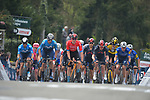 The peloton climb the Mur de Huy during the 2021 Flèche-Wallonne, running 193.6km from Charleroi to Huy, Belgium. 21st April 221.  <br /> Picture: Serge Waldbillig | Cyclefile<br /> <br /> All photos usage must carry mandatory copyright credit (© Cyclefile | Serge Waldbillig)