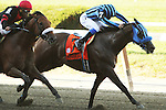 """September 27, 2014: Private Zone with Martin Pedroza win the 75th running of the $400,000 Grade I Vosburgh Stakes, a """"Win and You're In""""  3-year olds & up, going 7 furlongs at Belmont Park. Trainer: Alfredo Velazquez . Owner: Good Friends Stable . Sue Kawczynski/ESW/CSM"""