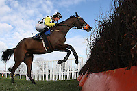 Franklin Roosevelt ridden by Noel Fehily in jumping action during the Connolly's Red Mills Horsefeed National Hunt Novices' Handicap Hurdle at Huntingdon Racecourse, Brampton, Cambridgeshire - 27/01/12 - MANDATORY CREDIT: Gavin Ellis/TGSPHOTO - Self billing applies where appropriate - 0845 094 6026 - contact@tgsphoto.co.uk - NO UNPAID USE.