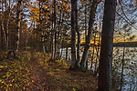Forest trail along the shores of Black Lake in the Chequamegon National Forest.
