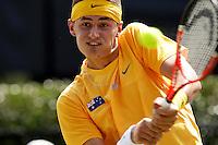 2011 Davis Cup