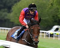 Award Scheme ridden by Tom Marquand goes down to the start  of The British Stallion Studs EBF Upavon Fillies' Stakes during Horse Racing at Salisbury Racecourse on 13th August 2020