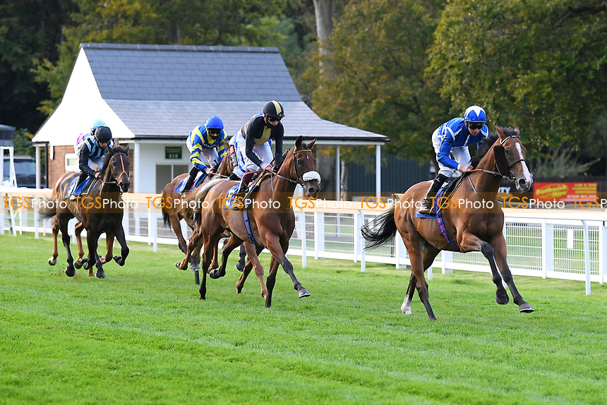 The start of The Persian Punch Conditions Stakes      during Horse Racing at Salisbury Racecourse on 11th September 2020