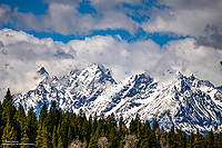Yellowstone/Grand Tetons