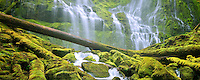 Close up of Proxy Falls. Three Sisters Wilderness, Oregon