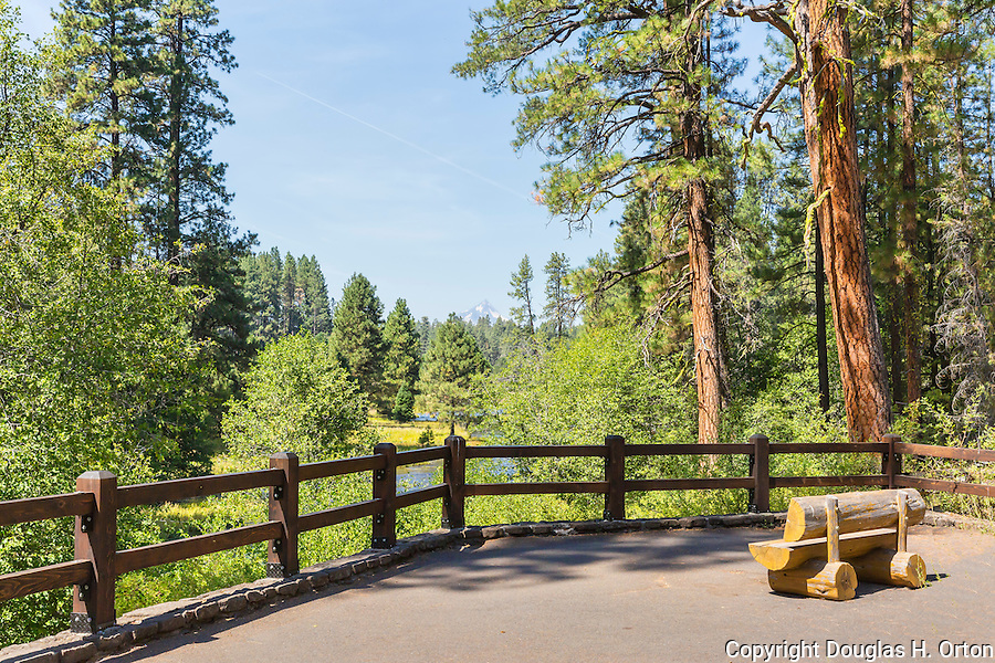 Viewpoint at the headwaters of the Metolius River. The Metolius River, a tributary of the Deschutes River in Oregon, is unique in bursting from the ground full size from artesian sources providing a volume that never varies year round.  Prime trout and salmon habitat in the Oregon Cascade Mountain Range.