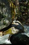 Yosemite Creek on Eastern Approach Trail to Yosemite Falls, Yosemite National Park