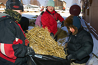 Children in Takotna help clean dog straw @ Takotna Chkpt 2006 Iditarod Interior Alaska Winter
