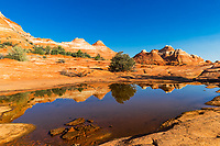 Colorful, sedimentary rocks and formations under a blue sky, reflecting on a storm water pond on The Wave trail, at the Arizona and Utah border USA