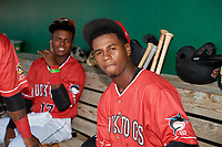 Batavia Muckdogs Samuel Castro (15) and Dalvy Rosario (17) in the dugout before a NY-Penn League game against the Auburn Doubledays on June 18, 2019 at Dwyer Stadium in Batavia, New York.  Batavia defeated Auburn 7-5.  (Mike Janes/Four Seam Images)