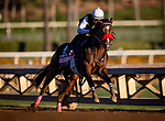 OCT 25:Breeders' Cup Juvenile Fillies entrant Comical, trained by Doug F. O'Neill,  works under Abel Cedillo at Santa Anita Park in Arcadia, California on Oct 25, 2019. Evers/Eclipse Sportswire/Breeders' Cup