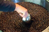 Owner Kaleo turning over roasted coffee beans as they cool, Kaleo's Koffee, Pua'a Kea Farm, Pa'auilo, Big Island.