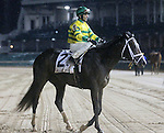 April 25, 2015 Churchill Downs Opening Night.  Blofeld in the rain after the William Walker Stakes.  Jockey John Velazquez, owner Glencrest Farm, trainer Todd A. Pletcher.  By Quality Road x Storm Minstrel (Storm Cat).  He finished 3rd to Cinco Charlie.  ©Mary M. Meek/ESW/CSM