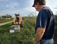 Richard Wander watches as Joe Blair delivers a flat of bees to Lynds Fruit Farm near Pataskala, Ohio, Monday, April 30, 2007. Blair, the largest bee supplier in Ohio, lost more than 1,100 hives over the winter to colony collapse disorder. Added to his business woes is a cold spring that damaged many orchards that no longer need as many bees.  Blair delivered 48 hives to Lynds which normally needs 200.