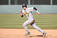 Andrew Knapp #5 of the California Golden Bears runs the bases during a game against the UCLA Bruins at Jackie Robinson Stadium on March 23, 2013 in Los Angeles, California. (Larry Goren/Four Seam Images)