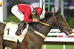 February 20, 2021: ALBATHALY #1 ridden by William Ramos wins The Jockey Club Local Handicap for F. Saad on Saudi Cup Day, King Abdulaziz Racecourse, Riyadh, Saudi Arabia. Shamela Hanley/Eclipse Sportswire/CSM