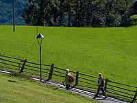Wanderer bei Vellau, Algund bei Meran, Region Südtirol-Bozen, Italien, Europa<br /> hiker near Vellau,  Lagundo near Merano, Region South Tyrol-Bolzano, Italy, Europe