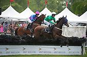 4th National Hunt Cup Stakes (III) - Bob Le Beau