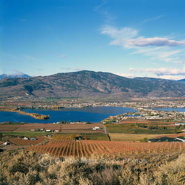 Osoyoos, South Okanagan Valley, BC, British Columbia,  Canada - Scenic Lookout over Vineyards, Orchards, Osoyoos Lake, Town of Osoyoos, and the Okanagan Range of the Cascade Mountains