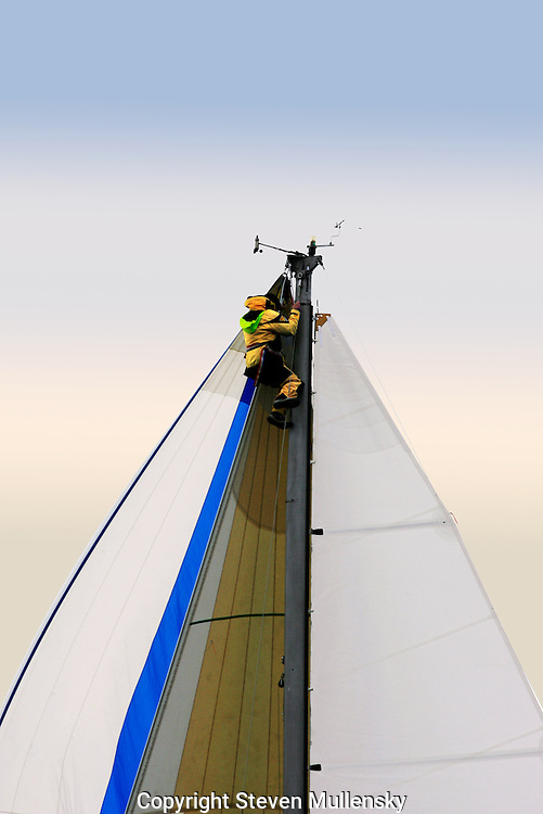 A sailor has to climb the mast to free up a stuck halyard during a regatta.