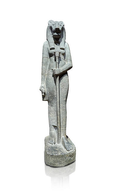 """Ancient Egyptian statue of goddess Sekhmet, grandodiorite, New Kingdom, 18th & 20thDynasty (1390-1150 BC), Thebes. Egyptian Museum, Turin. white background.<br /> <br /> Sekhmet, """"the Powerful One"""" was a fearsome goddess symbolised by her lioness head. Daughter of the sun she personifies the disk of the world during the day. Sekhmet is the angry manifestation of Hathor inflicting the scourges of summer heat, famine and illness which is why the goddess needed to be exorcised every day. Drovetti Collection. C 255"""