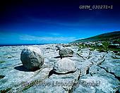 Tom Mackie, LANDSCAPES, LANDSCHAFTEN, PAISAJES, FOTO, photos,+6x7, bolders, County Clare, horizontal, horizontals, Ireland, limestone pavement, medium format, rocky, The Burren,6x7, bolde+rs, County Clare, horizontal, horizontals, Ireland, limestone pavement, medium format, rocky, The Burren+++,GBTM030271-1,#L#, EVERYDAY ,Ireland