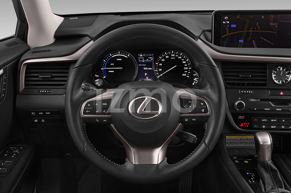 Car pictures of steering wheel view of a 2019 Lexus RX Privilege-Line 5 Door SUV Steering Wheel