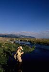 Cathy Beck choosing the right fly on Benharts spring creek, MZ Ranch, Belgrade, Montana.