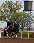 LEXINGTON, KY - APRIL 15: Nyquist, trained by Doug O'Neill works at Keeneland race course just after 7am in preparation for the Kentucky Derby on May 7th, 2016 at Churchill Downs in Louisville, KY. April 15, 2016 in Lexington, Kentucky. (Photo by Candice Chavez/Eclipse Sportswire/Getty Images)