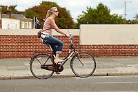 Hampton Court , Surrey , August 2011 pic copyright Steve Behr / Stockfile