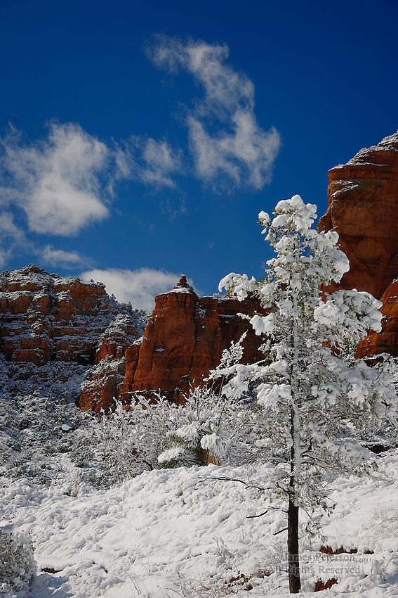 Winter Scene, near Sedona, Arizona