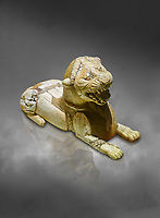 Phrygian ivory statuette carved as a roaring lion lying down from a table base decoration. From Gordion. Phrygian Collection, 8th-7th century BC - Museum of Anatolian Civilisations Ankara. Turkey. Against a grey background