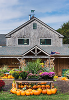 Autumn display, Morning Glory Farm stand, Edgartown, Martha's Vineyard, Massachusetts, USA.
