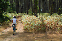 Woman mountain biking alone through Landes Forest, Aquitaine, France.