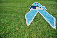 19 June 2011: A blue cancer awareness ribbon is displayed on the grass as the Washington Nationals and Major League Baseball support the Prostate Cancer Foundation during Father's Day at Nationals Park in Washington, District of Columbia. The visiting Baltimore Orioles defeated the Nationals 7-4 in inter-league play, ending Washington's 8-game winning streak. Mandatory Credit: Ed Wolfstein Photo