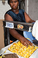 Placing Fermenting Cashew Apples into a Press, to Collect their Juice.  North Bank Region,  The Gambia.  The woman is of the Manjago ethnic group, a primarily Christian tribe.