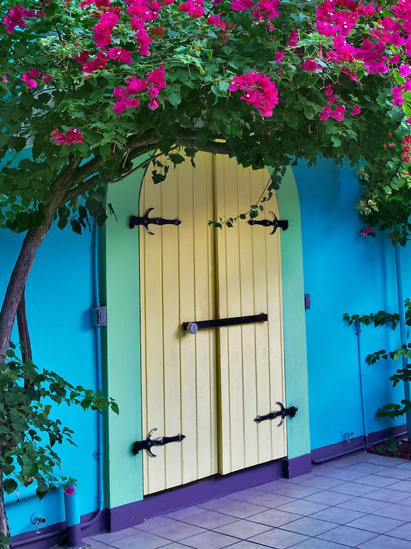 Store front doors with Bouganvilla. St. John. Virgin Slands