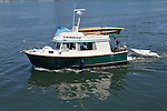 Race to Alaska, support crews prepare at dock, Inner Harbor, Victoria, British Columbia, for Ketchikan, Alaska, support craft, Race to Alaska volunteers,
