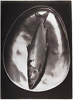 This is a Platinum Palladium print on Velum over silver leaf. <br /> Image size  25 x 19 cm