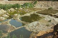 Kiesgrube renaturiert, nachdem sie nicht mehr genutzt wird,
