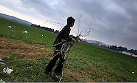 Pictured: A young boy collects wood at Idomeni Monday 29 February 2016<br /> Re: A crowd of migrants has burst through a barbed-wire fence on the FYRO Macedonia-Greece border using a steel pole as a battering ram.<br /> TV footage showed migrants pushing against the fence at Idomeni, ripping away barbed wire, as FYRO Macedonian police let off tear gas to force them away.<br /> A section of fence was smashed open with the battering ram. It is not clear how many migrants got through.<br /> Many of those trying to reach northern Europe are Syrian and Iraqi refugees.<br /> About 6,500 people are stuck on the Greek side of the border, as FYRO Macedonia is letting very few in. Many have been camping in squalid conditions for a week or more, with little food or medical help.