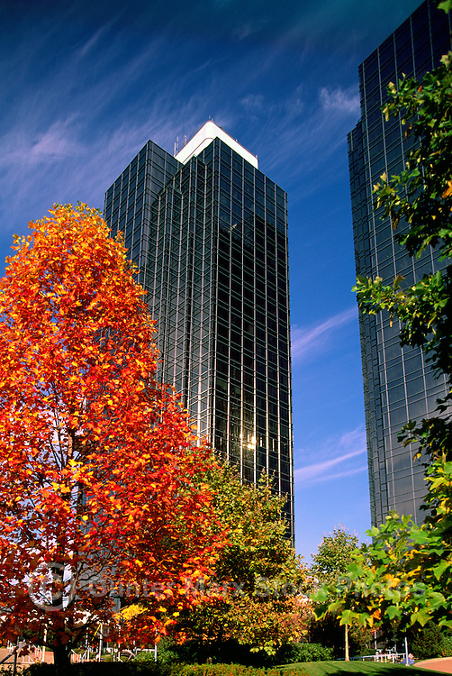 Burnaby, BC, British Columbia, Canada - Exterior of High Rise Office Buildings at Metrotown, Autumn, Fall