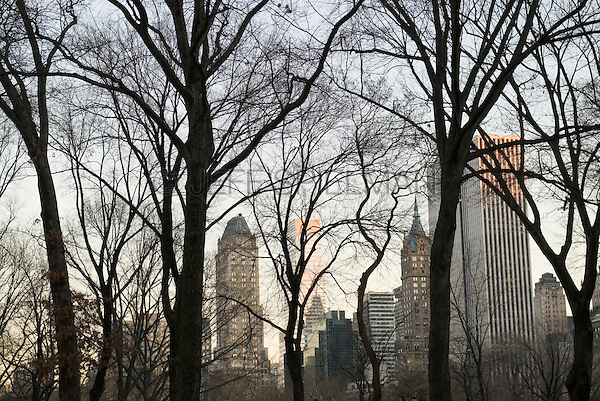 Central Park on a Late Winter Afternoon Looking Towards Buildings in Midtown Manhattan, New York City, New York State, USA