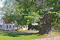 The parsonage at Nas in Vimmerby where the father of Astrid Lindgren was farming tenant. The sockerdricksträdet soda pop tree of Pippi Longstocking Nas. Vimmerby town Smaland region. Sweden, Europe.
