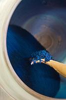 Europe/France/Midi-Pyrénées/31/Haute-Garonne/Toulouse: Confiserie - Fabrication des violettes de Toulouse à la Société Candiflor _ Préparation des baies à la violette véritable