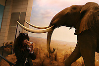 CHINA. Shanghai. An elephnat exhibit in the Shanghai Science and Technology Museum (?????; pinyin: Shàngh?i ke¯jì gu?n) is a large museum in Pudong, Shanghai, close to Century Park, the largest park of the city. The construction of the museum cost 1,75 billion RMB, and the floor area is 98 000m2 .2008..