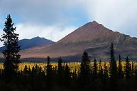 Nabesna Road, Alaska.