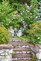 Secret alcove garden with dolls and tea party in stone wall near steps, Alcea, spiraea shrubs, nasturtiums at their feet,  heirloom and old-fashioned plants