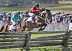 Jockey Justin Batoff and his horse Prospectors Strike (right) make their jump; while, Jockey Nick Carter and his horse Genghis (back/left) make an attempt jump during The Martha S. Wadsworth Memorial during the Genesee Valley Hunt Races held at The Nations Farm in Geneseo, NY. The Batoff team placed 1st.
